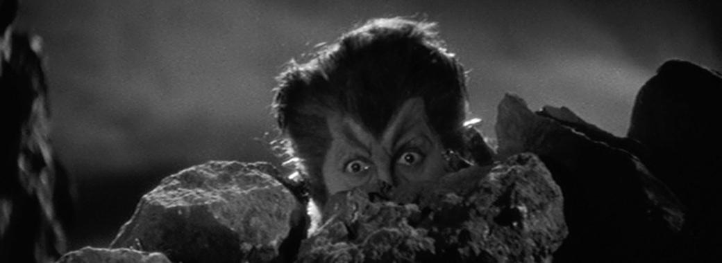 Werewolf-of-London-1935
